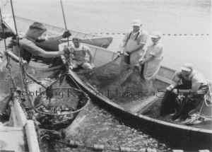 dory fishing